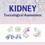 Kidney _ Toxicological Assessment