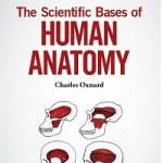The Scientific Bases of Human Anatomy